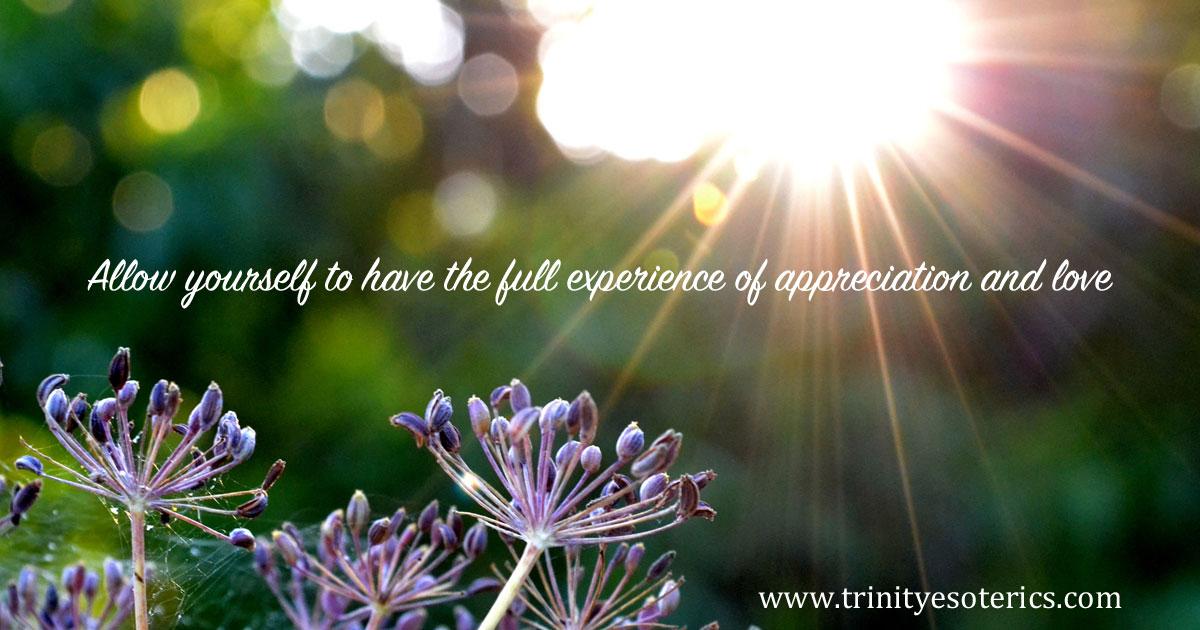 allowyourselftohavethefullexperienceofappreciationandlove