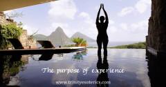 thepurposeofexperience