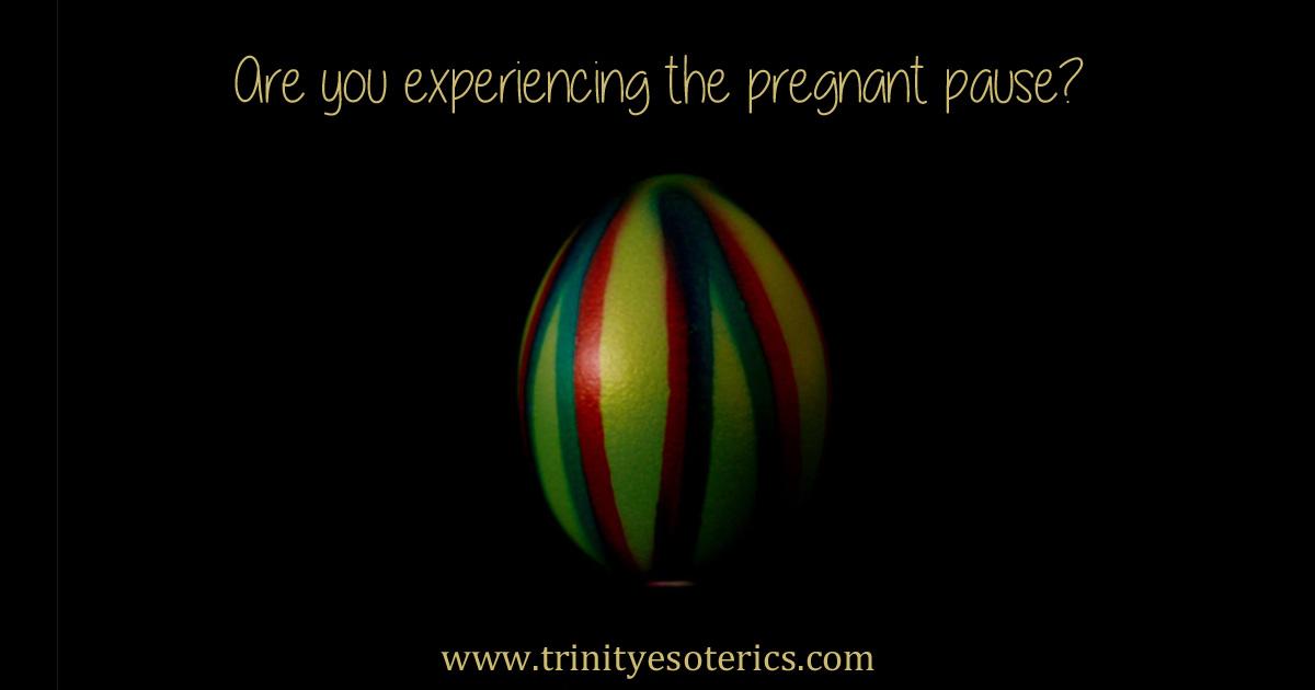 thepregnantpause