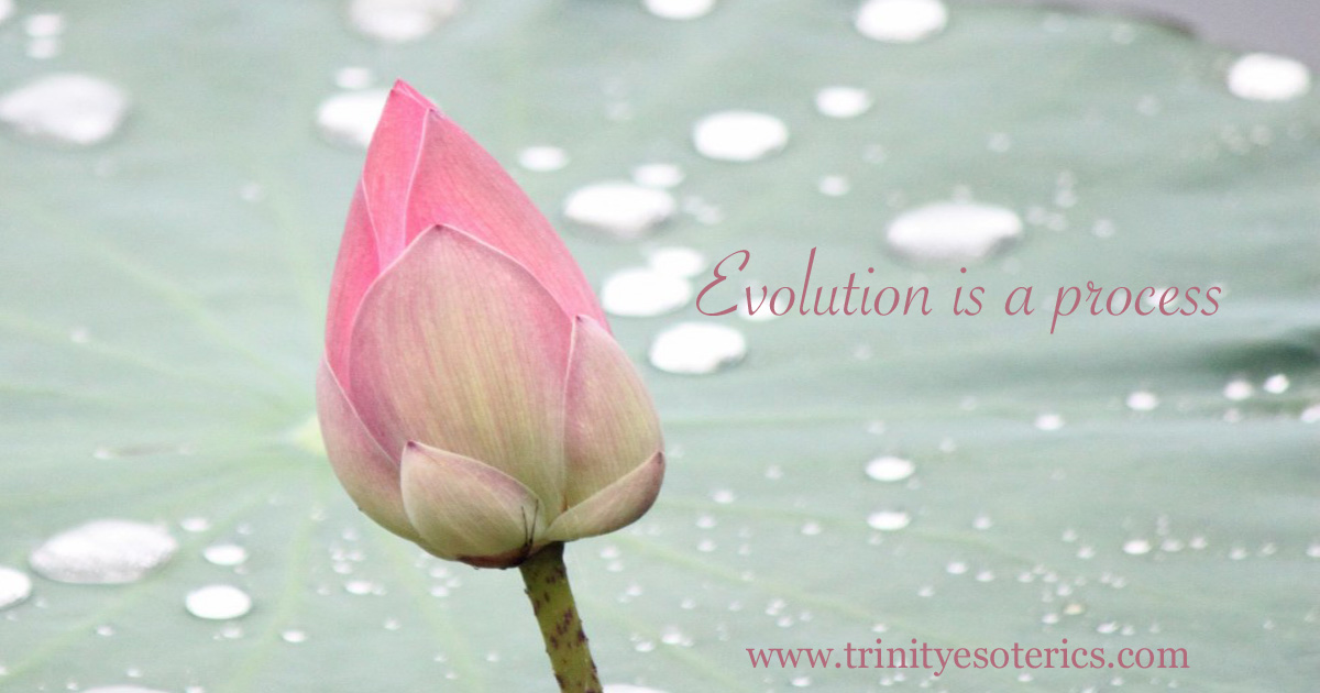 evolutionisaprocess