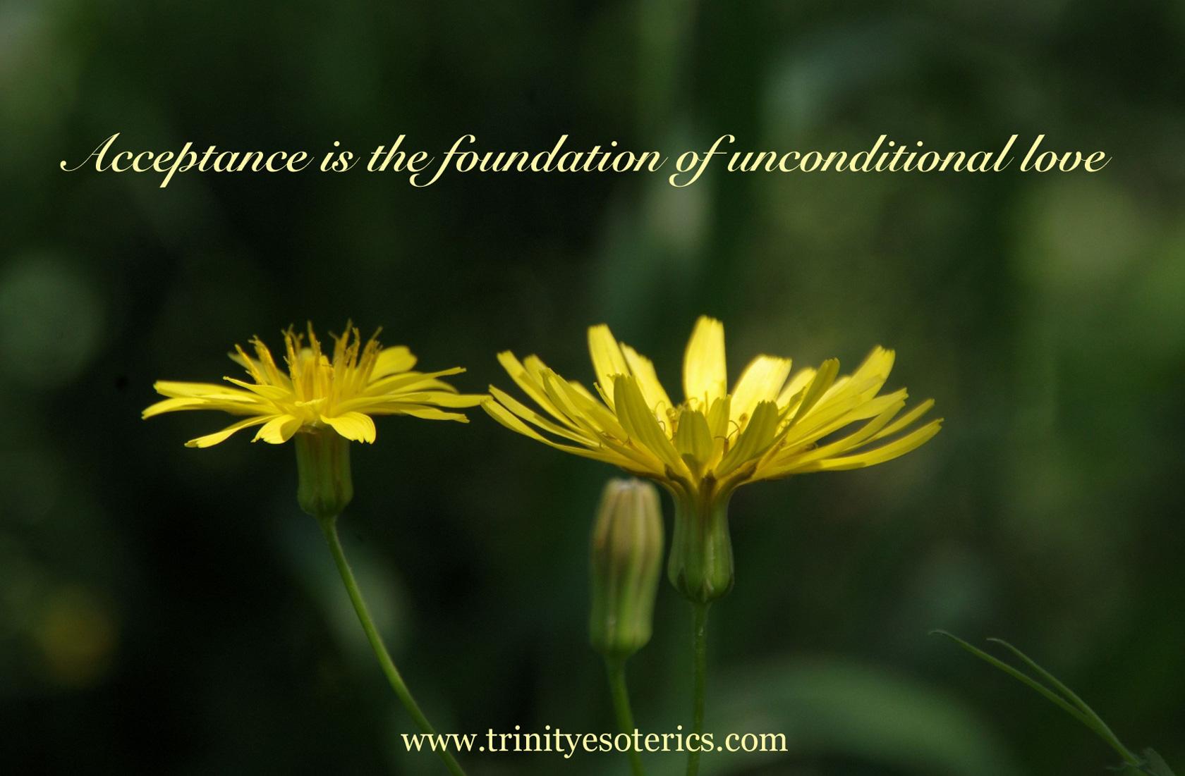 dandelion bloom trinity esoterics