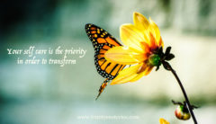 monarch butterfly bloom trinity esoterics