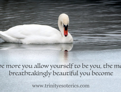 swan beauty trinity esoterics