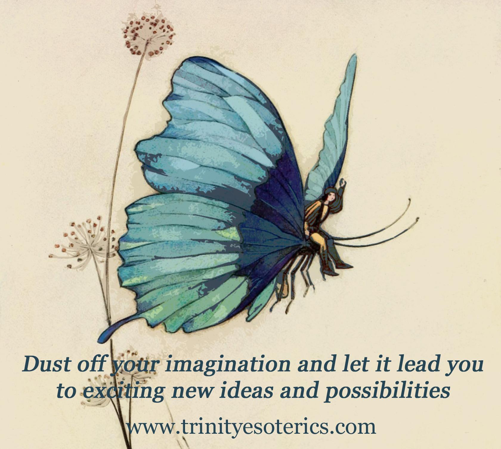 fairy butterfly trinity esoterics