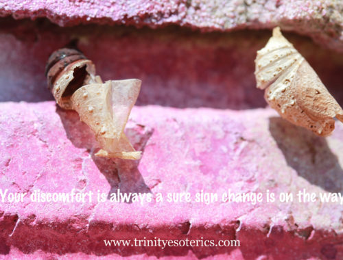 hatching cocoons trinity esoterics