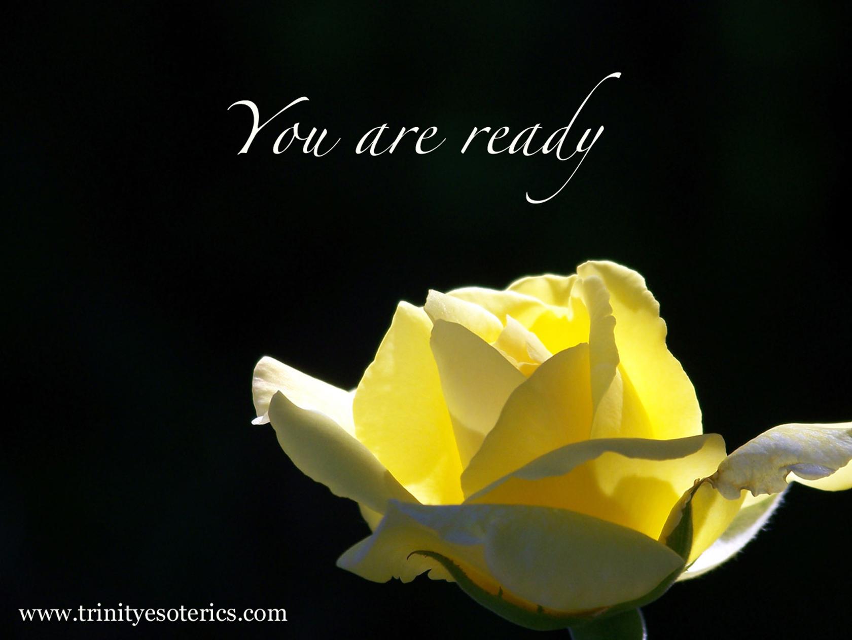 yellow rose trinity esoterics