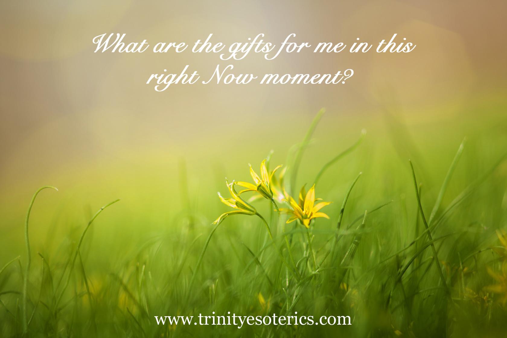 grass light wildflowers trinity esoterics