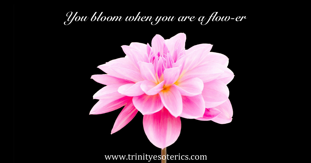 youbloomwhenyouareaflow-er