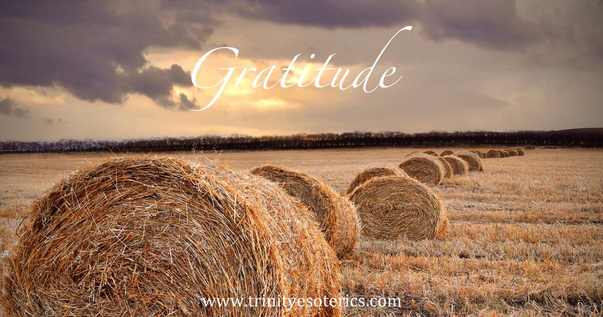 gratitude10
