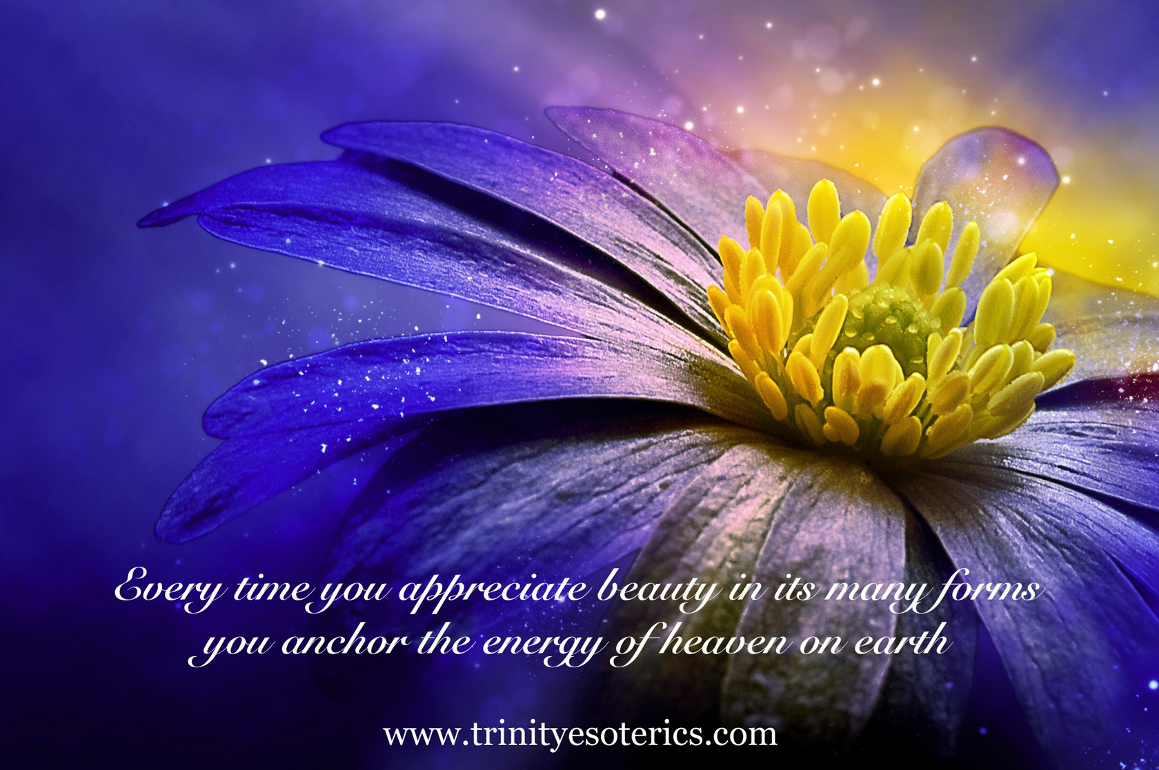 beautiful flower trinity esoterics