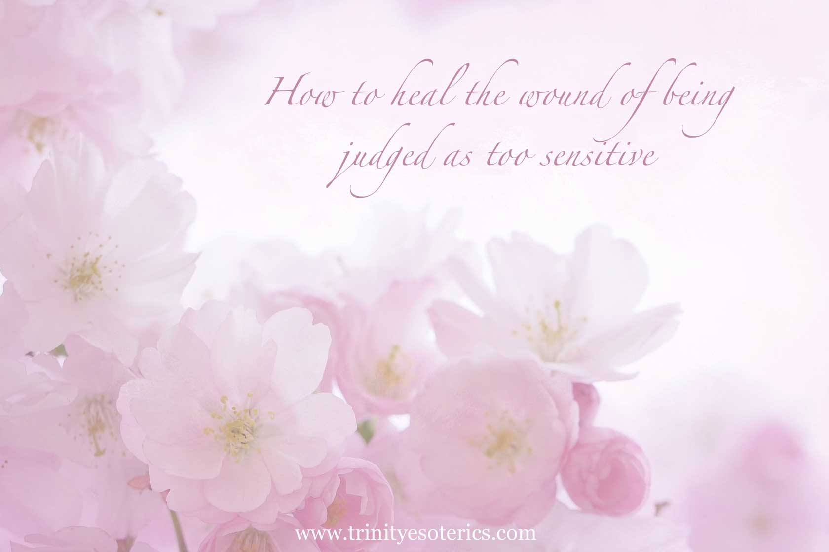 soft pink floral background trinity esoterics