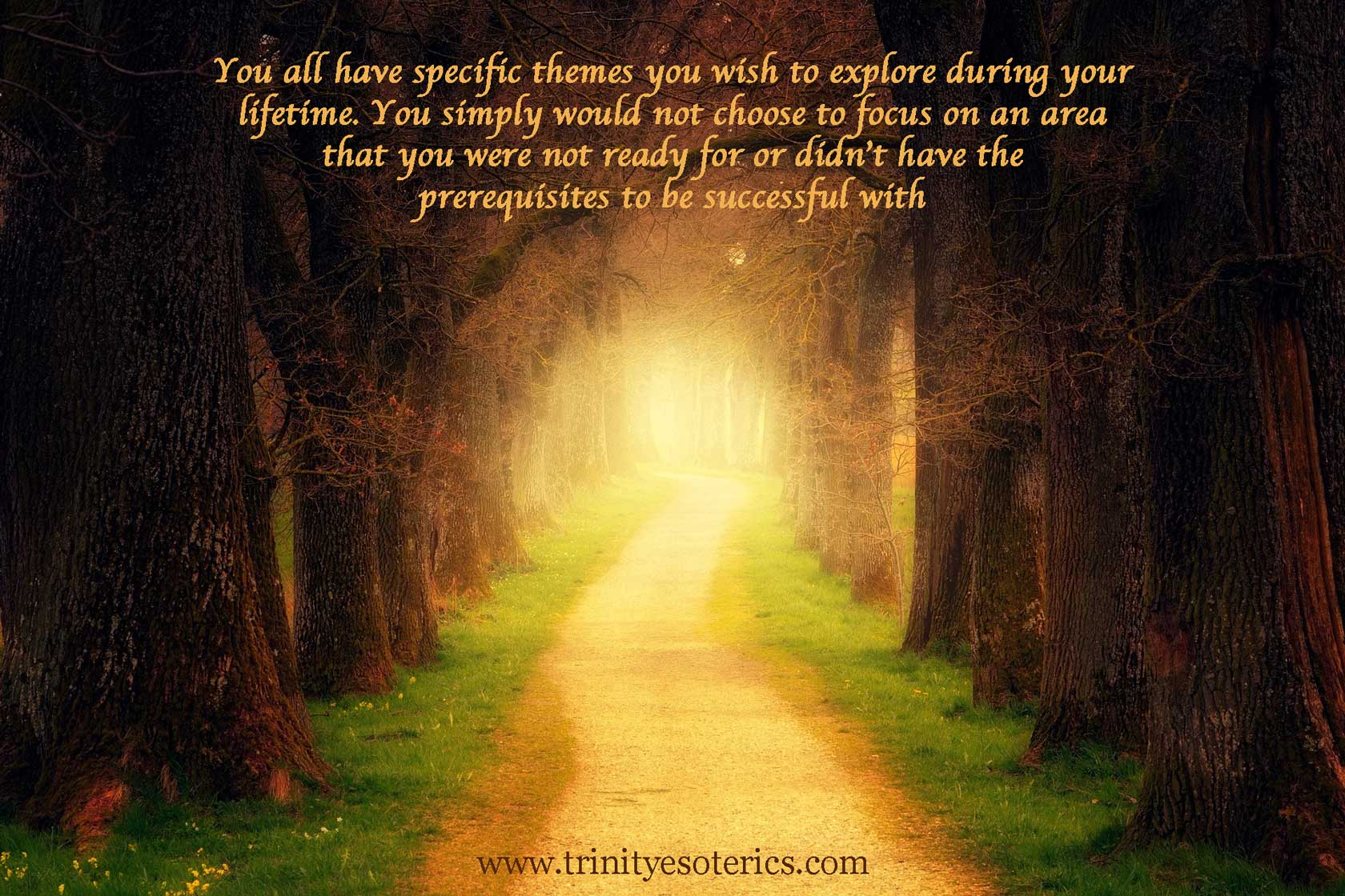 lighted path in the forest trinity esoterics