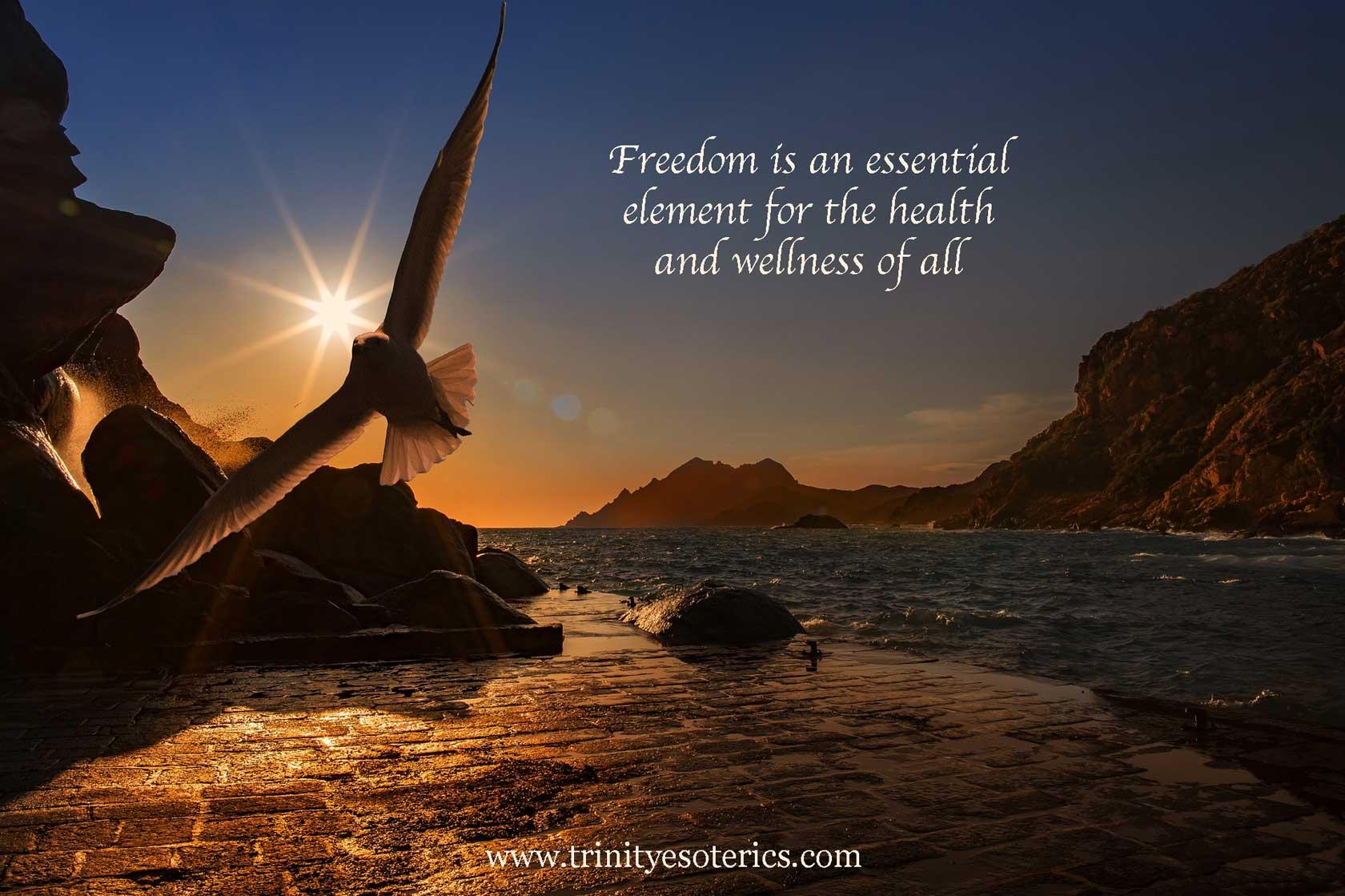 soaring bird trinity esoterics
