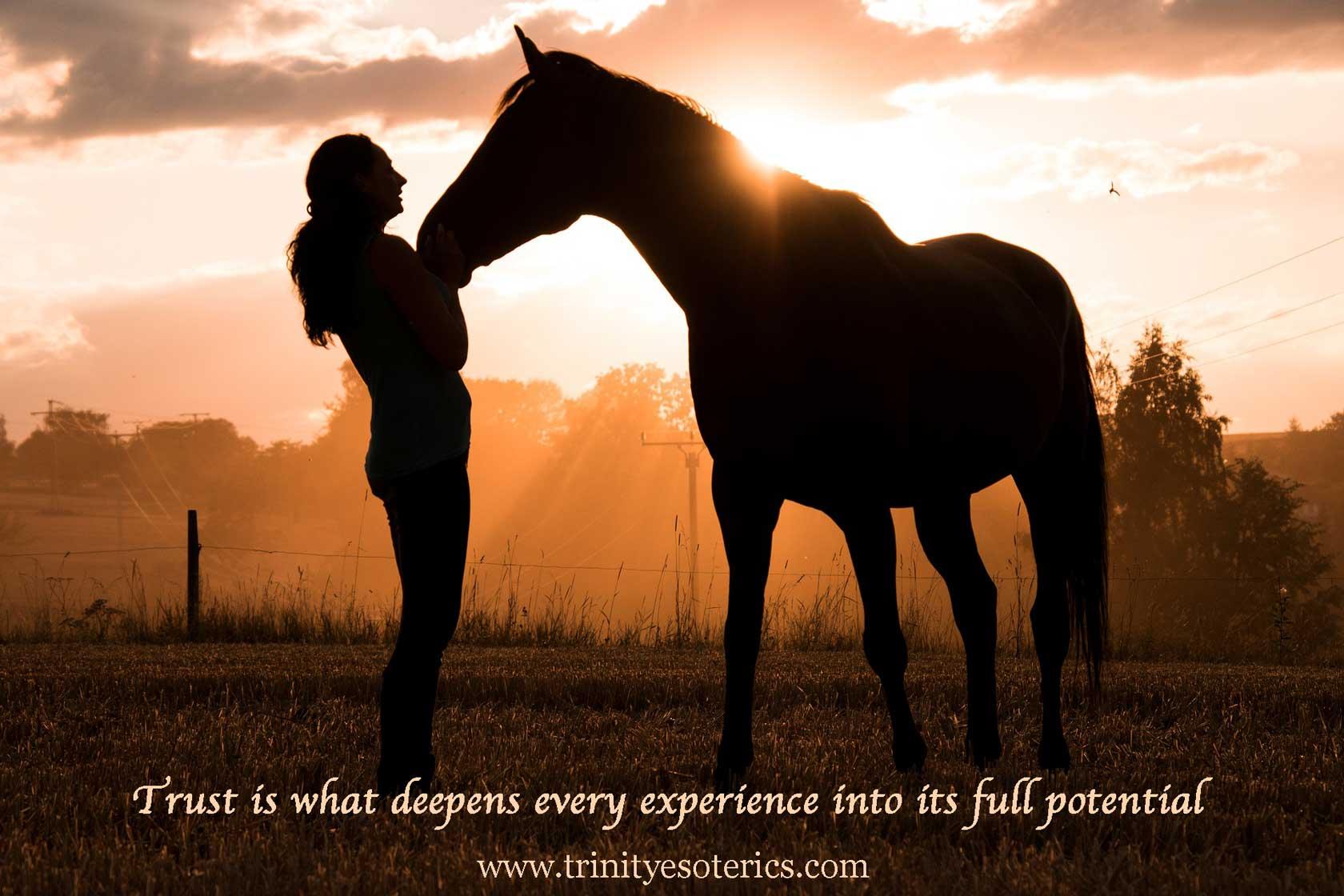 horse nuzzling woman at dusk trinity esoterics
