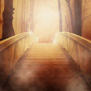Choosing a Beautiful Magical Life - Class Four