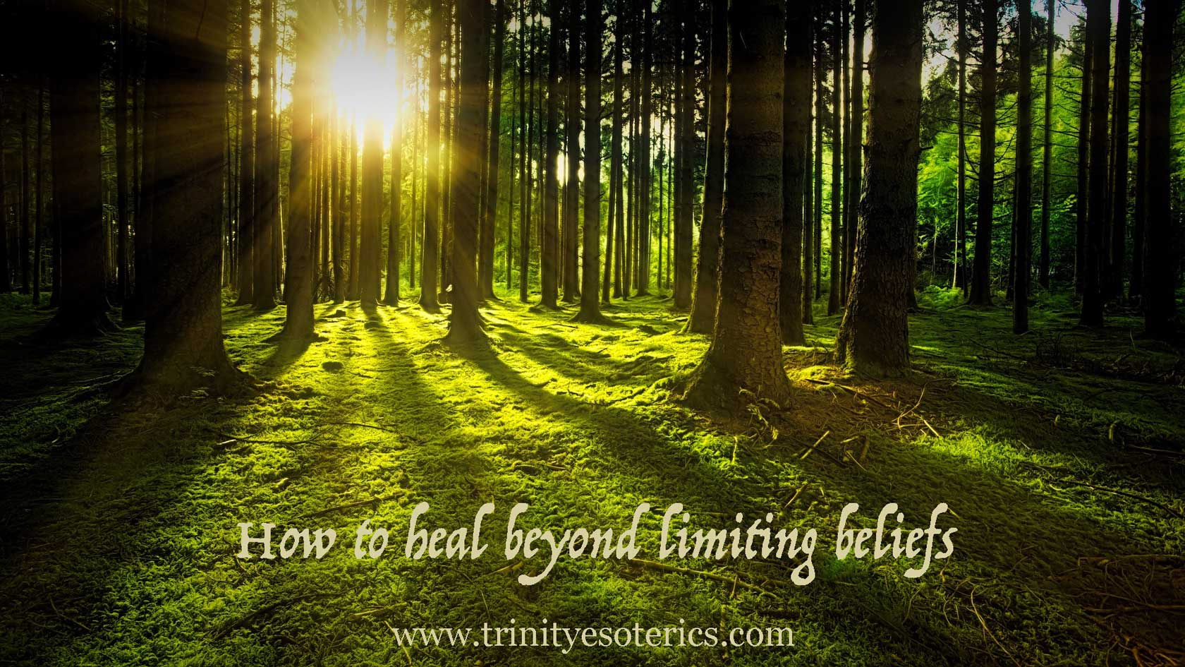 light coming through trees trinity esoterics
