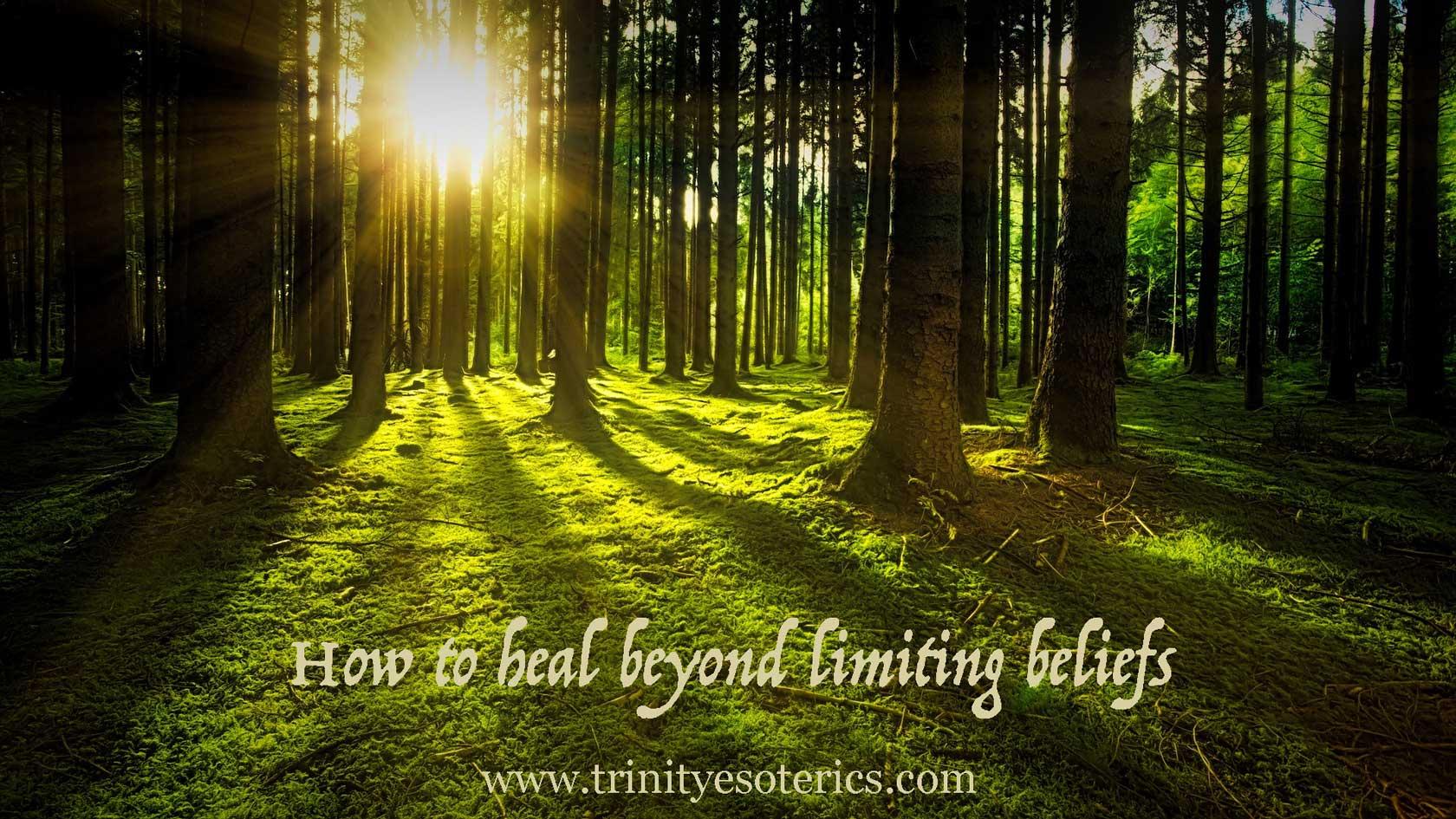 light coming through trees trinity esoterics