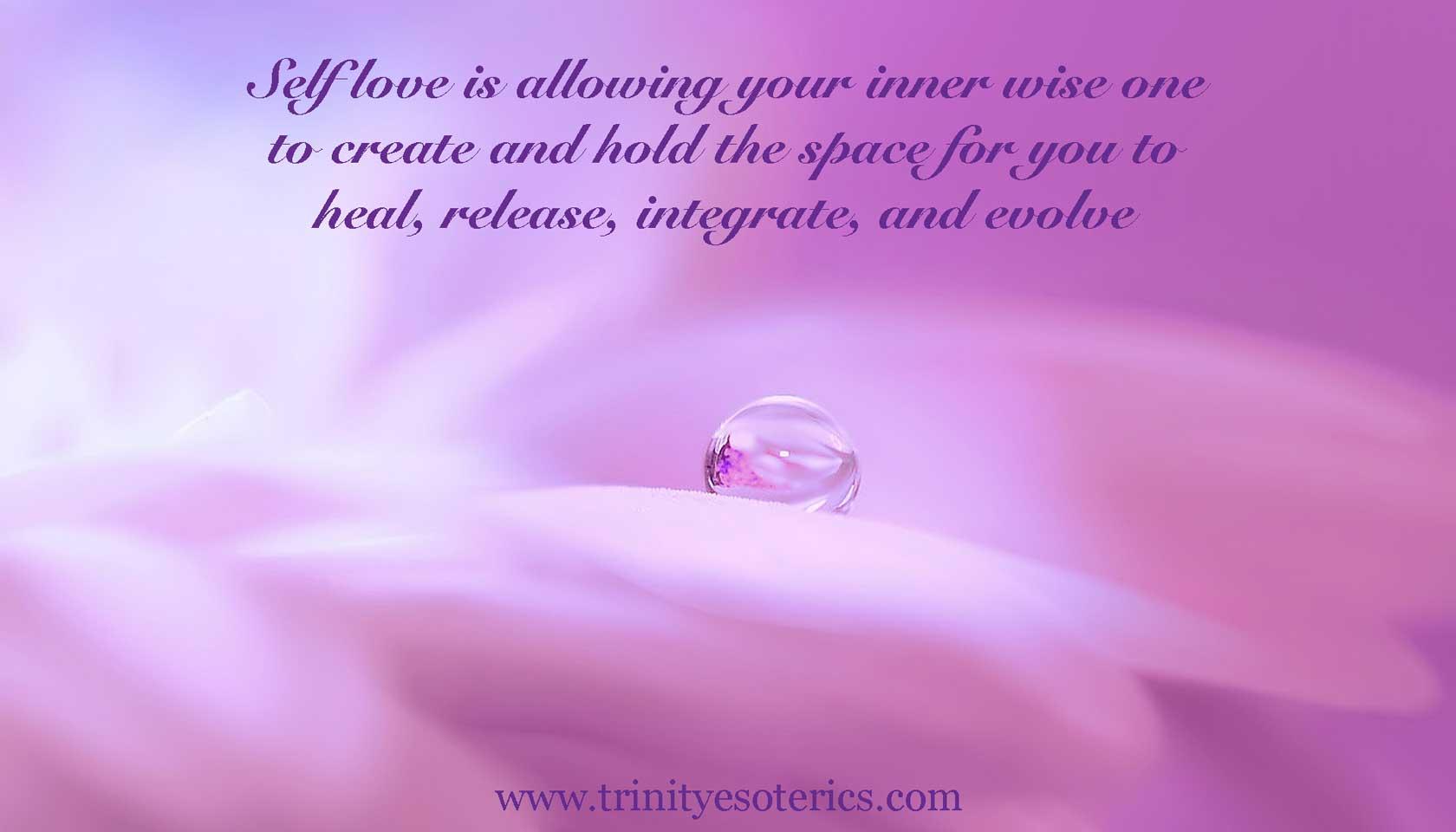 water droplet on pink petal trinity esoterics