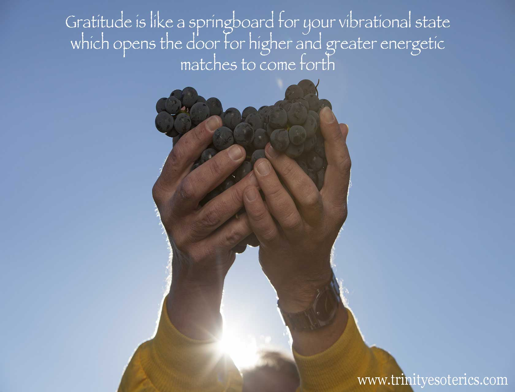 man holding up grapes in gratitude trinity esoterics