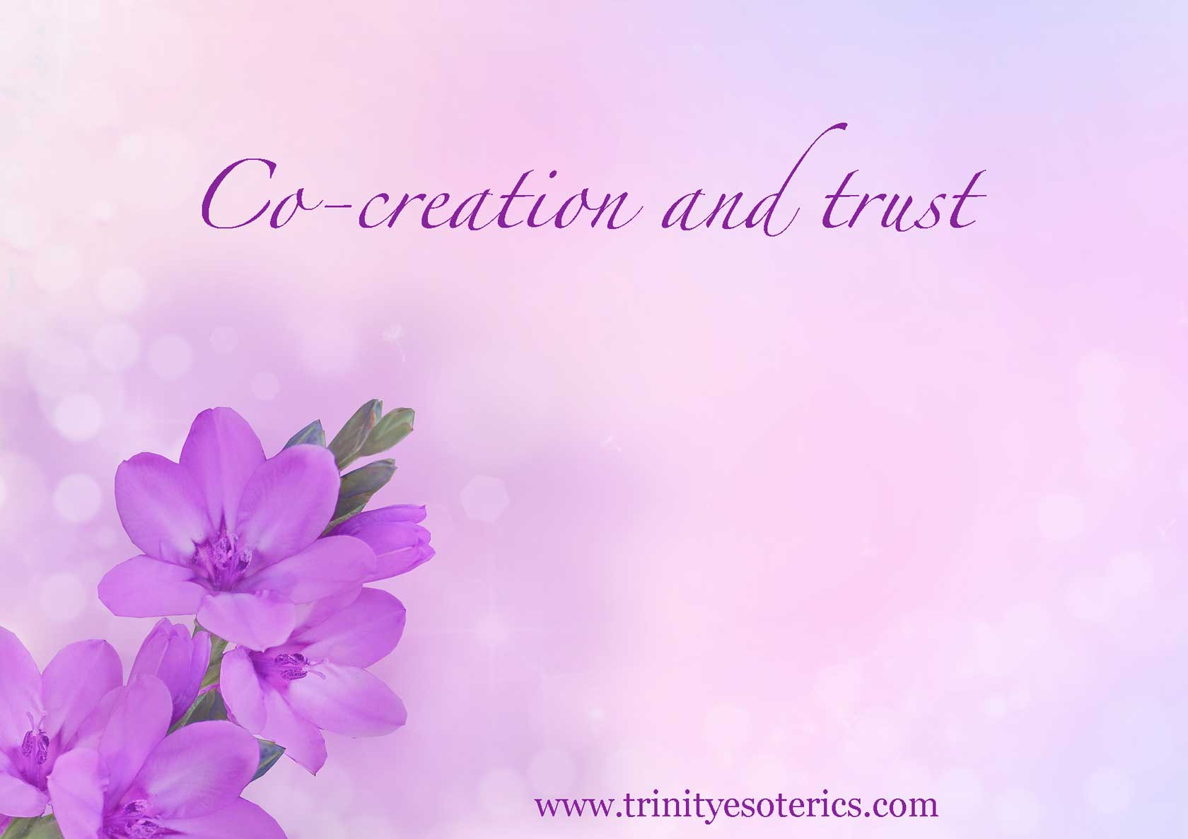 flowers on purple background trinity esoterics