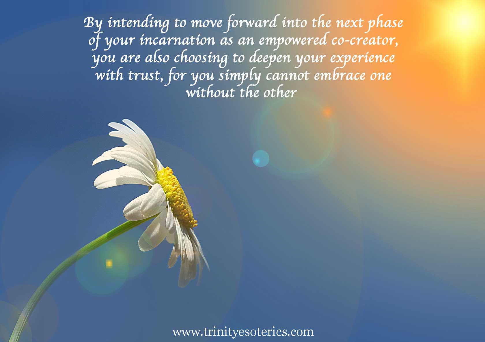 daisy reaching toward sun trinity esoterics