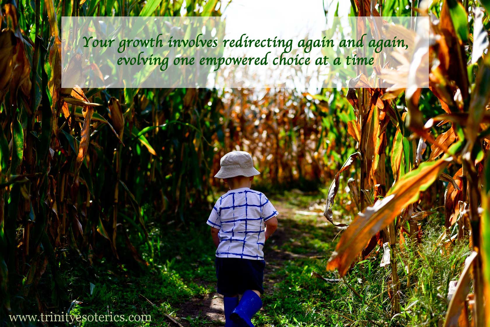 child in corn maze trinity esoterics