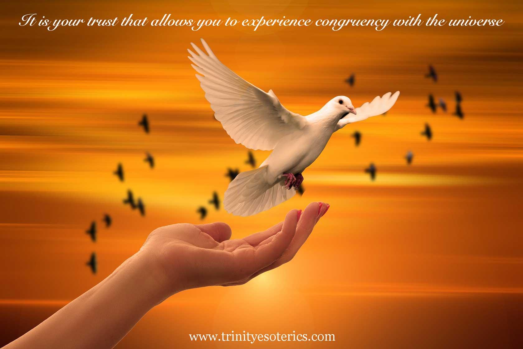 hand releasing dove trinity esoterics