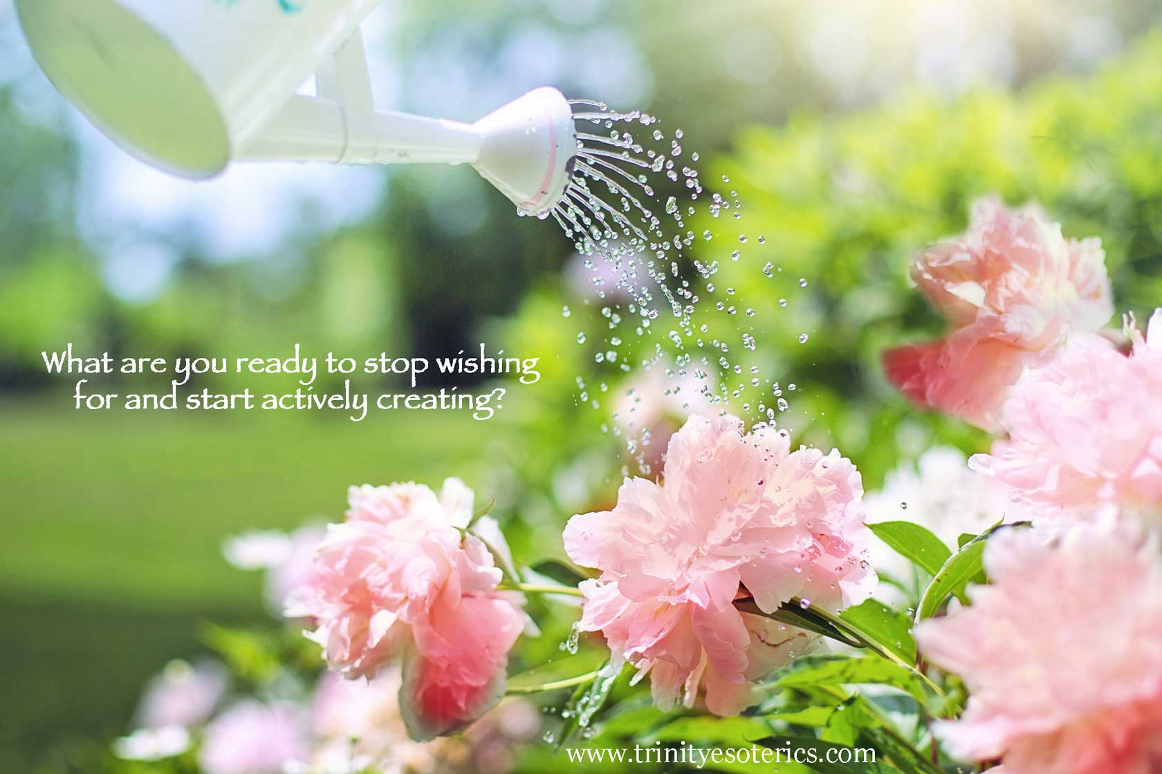 watering flowers trinity esoterics