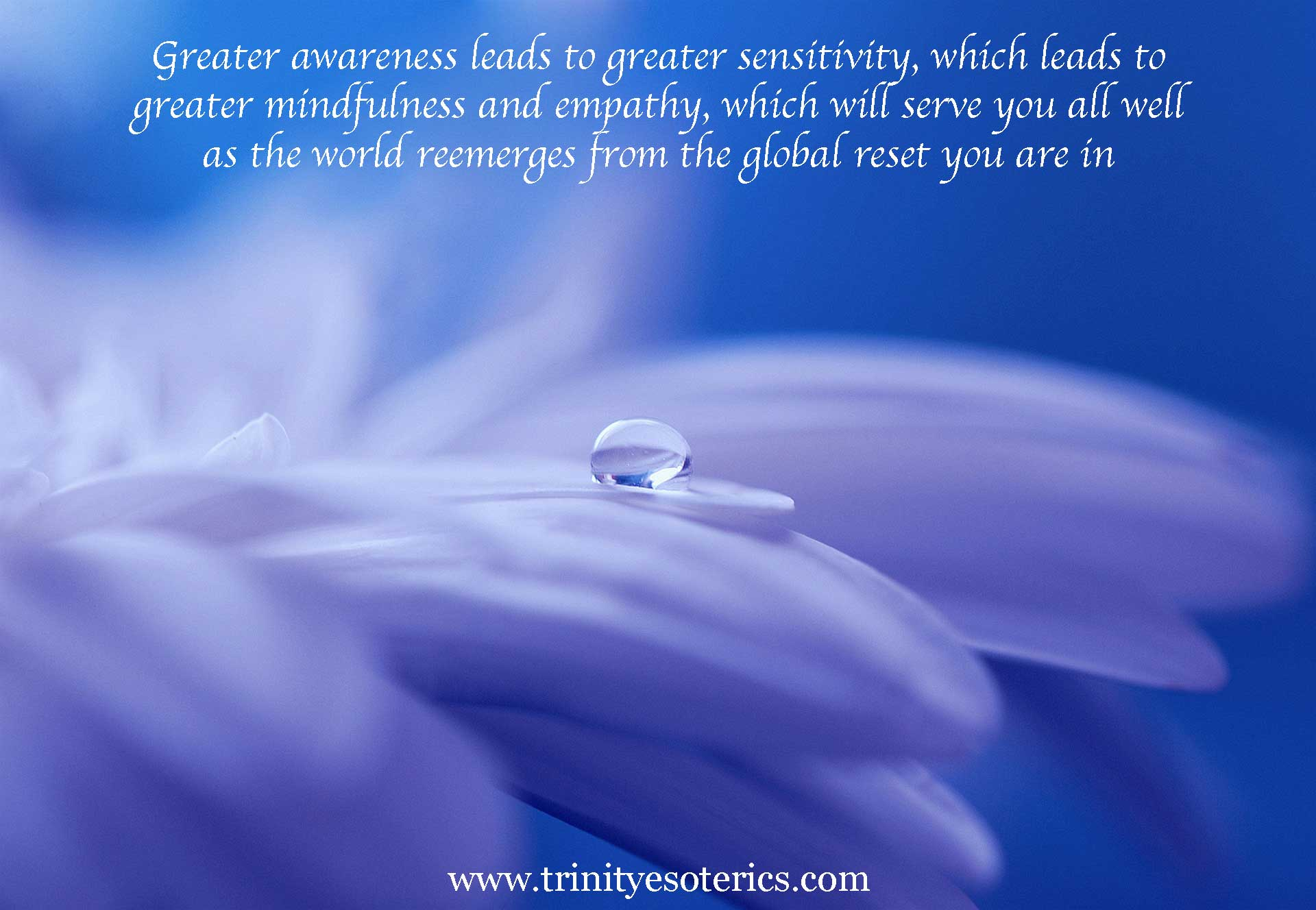 water droplet on petal trinity esoterics