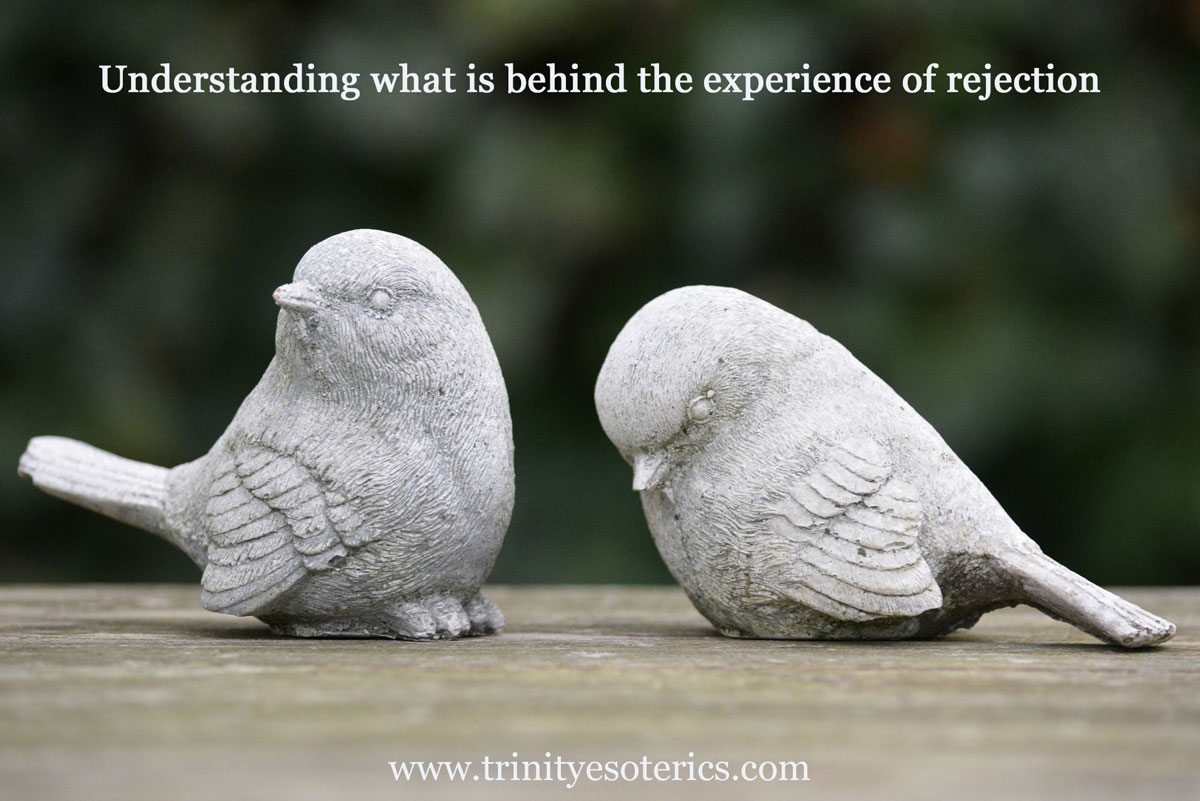 one bird turned away from another trinity esoterics