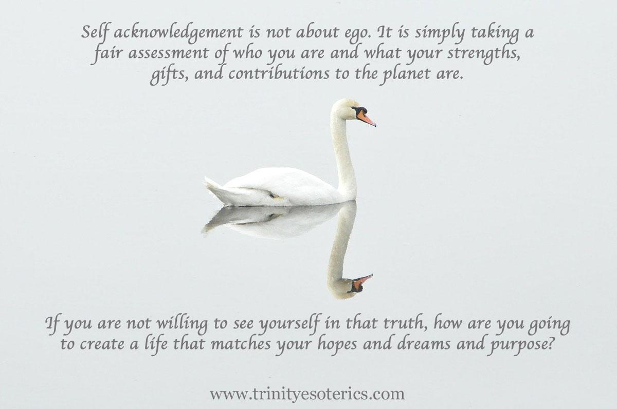 swan with reflection trinity esoterics